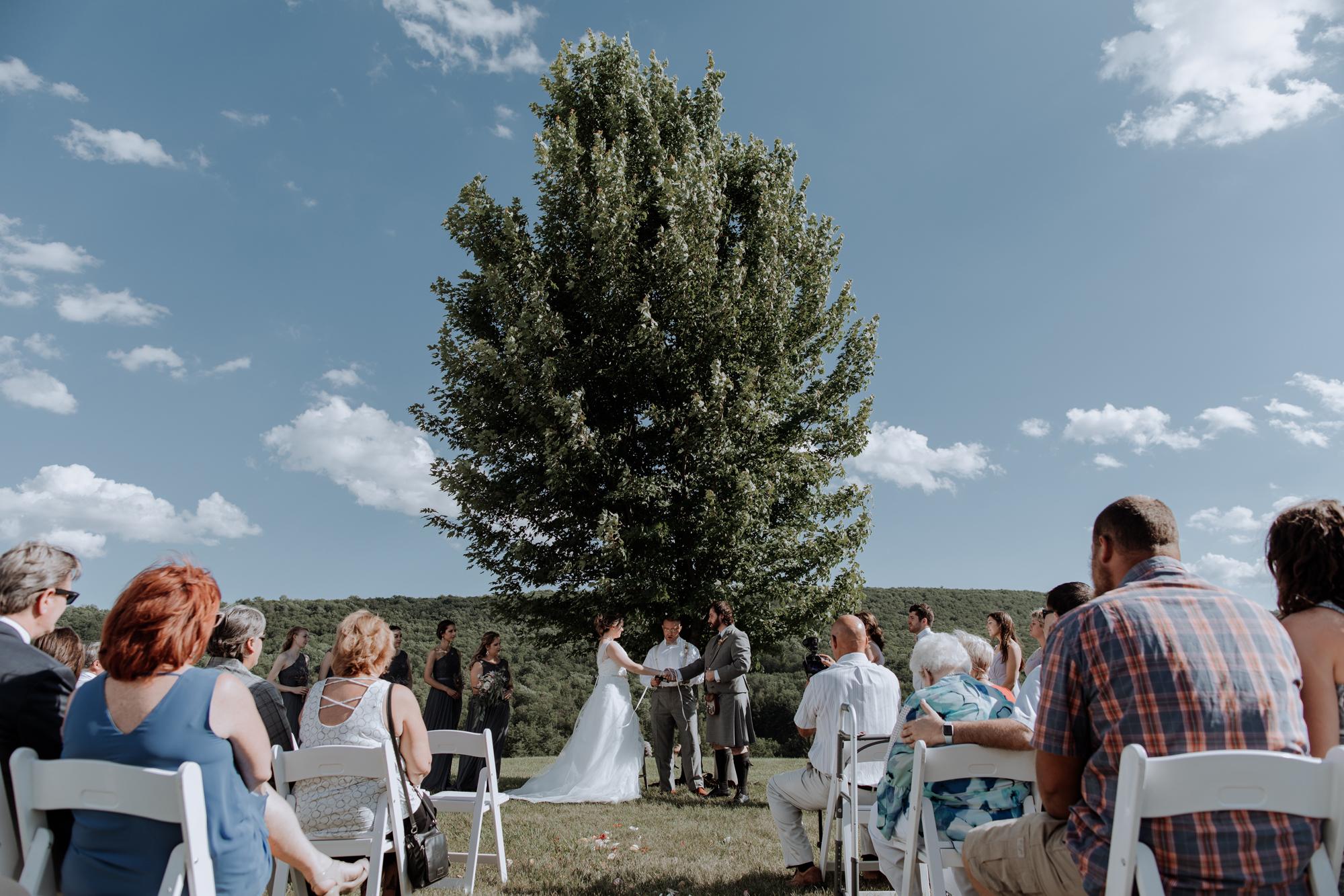 lehigh-valley-tree-wedding