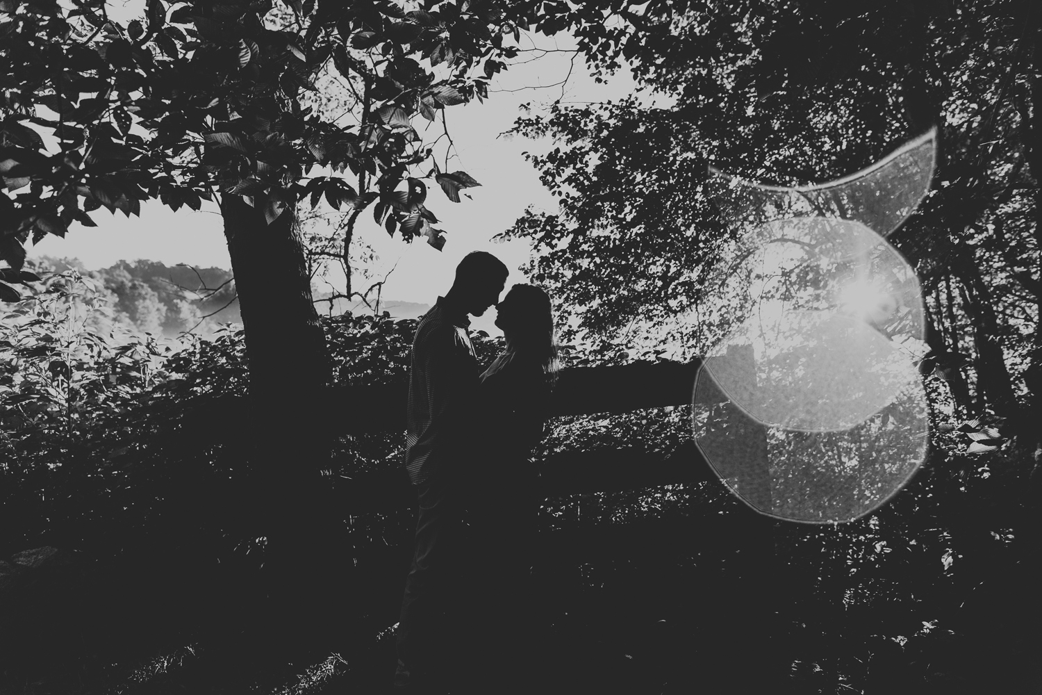 silhouette-engagement-photography-natural-light-the-laurels-preserve-lehigh-valley