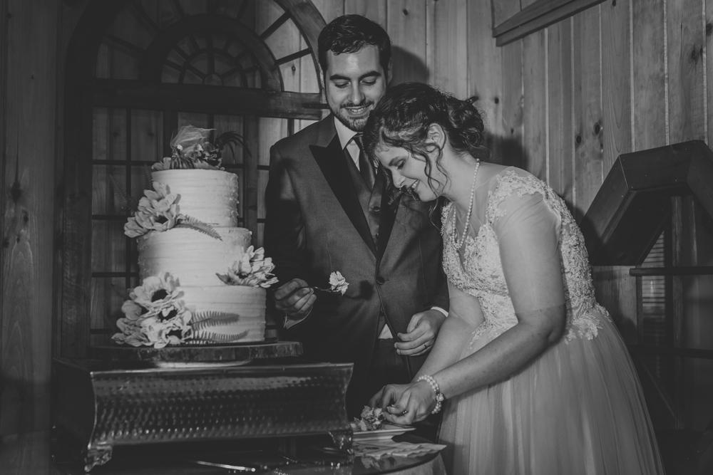 kings-mills-wedding-reception-photography-cake-cutting