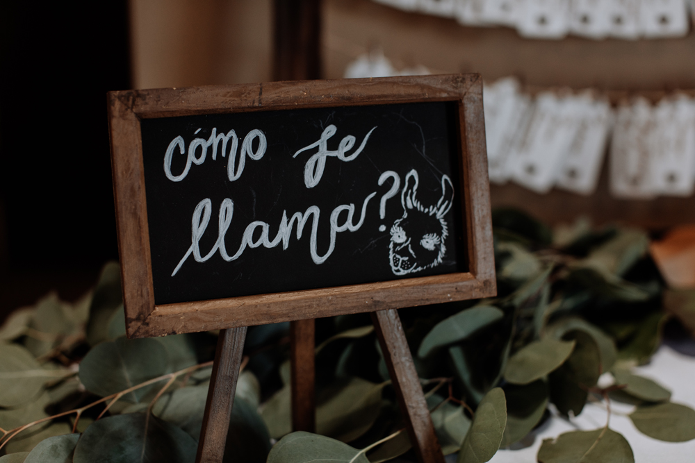 lehigh-valley-wedding-photography-llama-farm