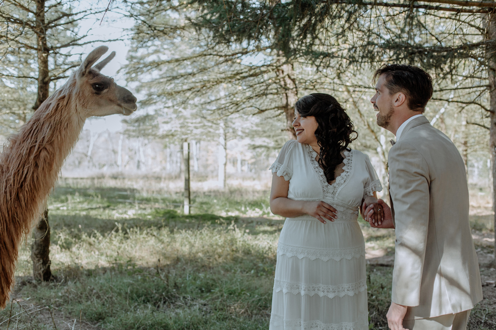 woods-edge-alpaca-farm-wedding-photography-first-look-3