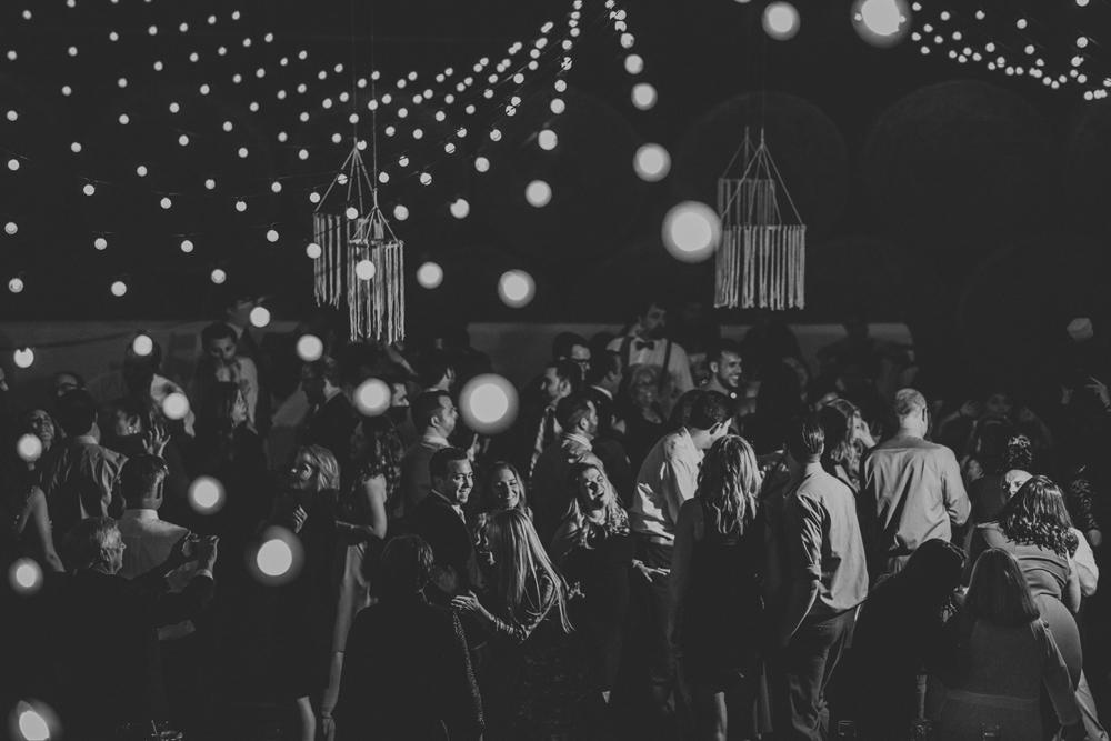 woods-edge-wools-alpaca-farm-wedding-reception-photography-5