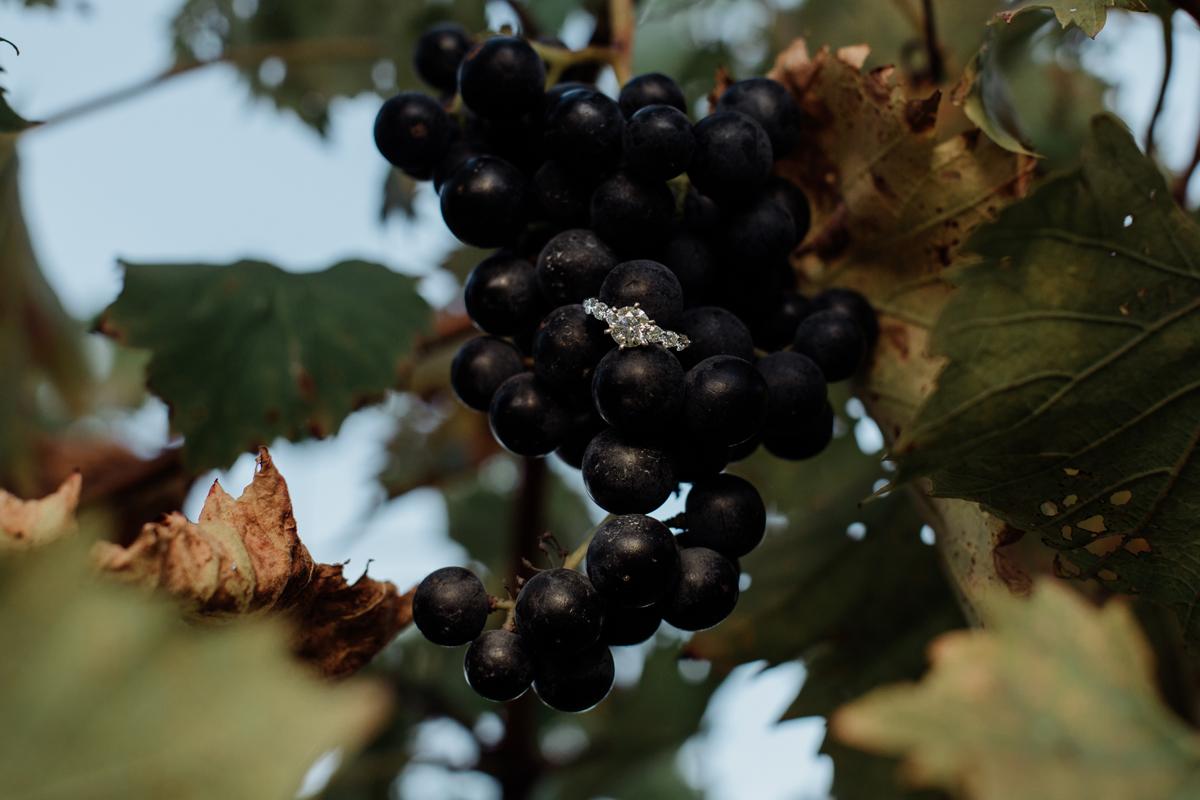 pa-vineyard-engagement-photography