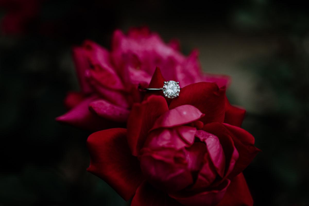 lock-ridge-park-engagement-photographer-ring-shot