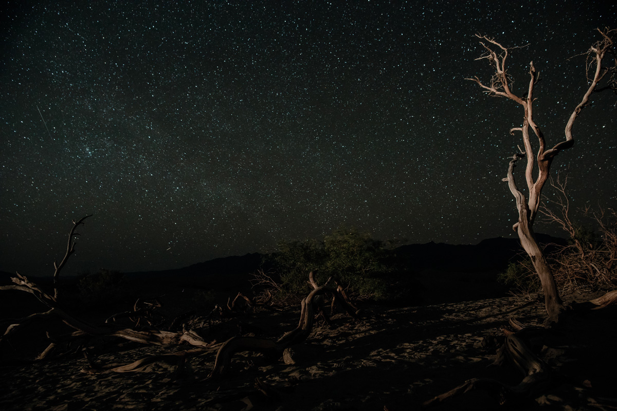 Image taken at f/4, 4000 ISO, and 30 second exposure with a Canon 24mm f/1.2 on a Canon 5D Mark IV body.