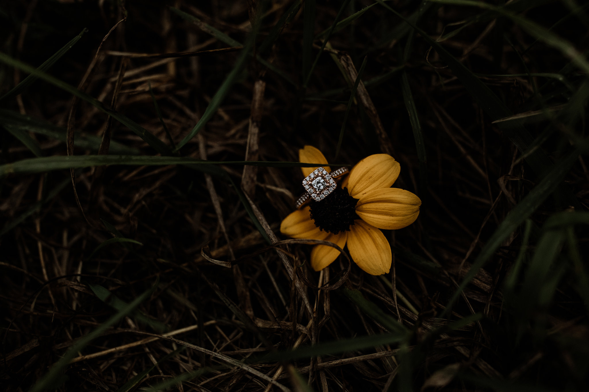 lehigh-valley-engagement-photography-ring