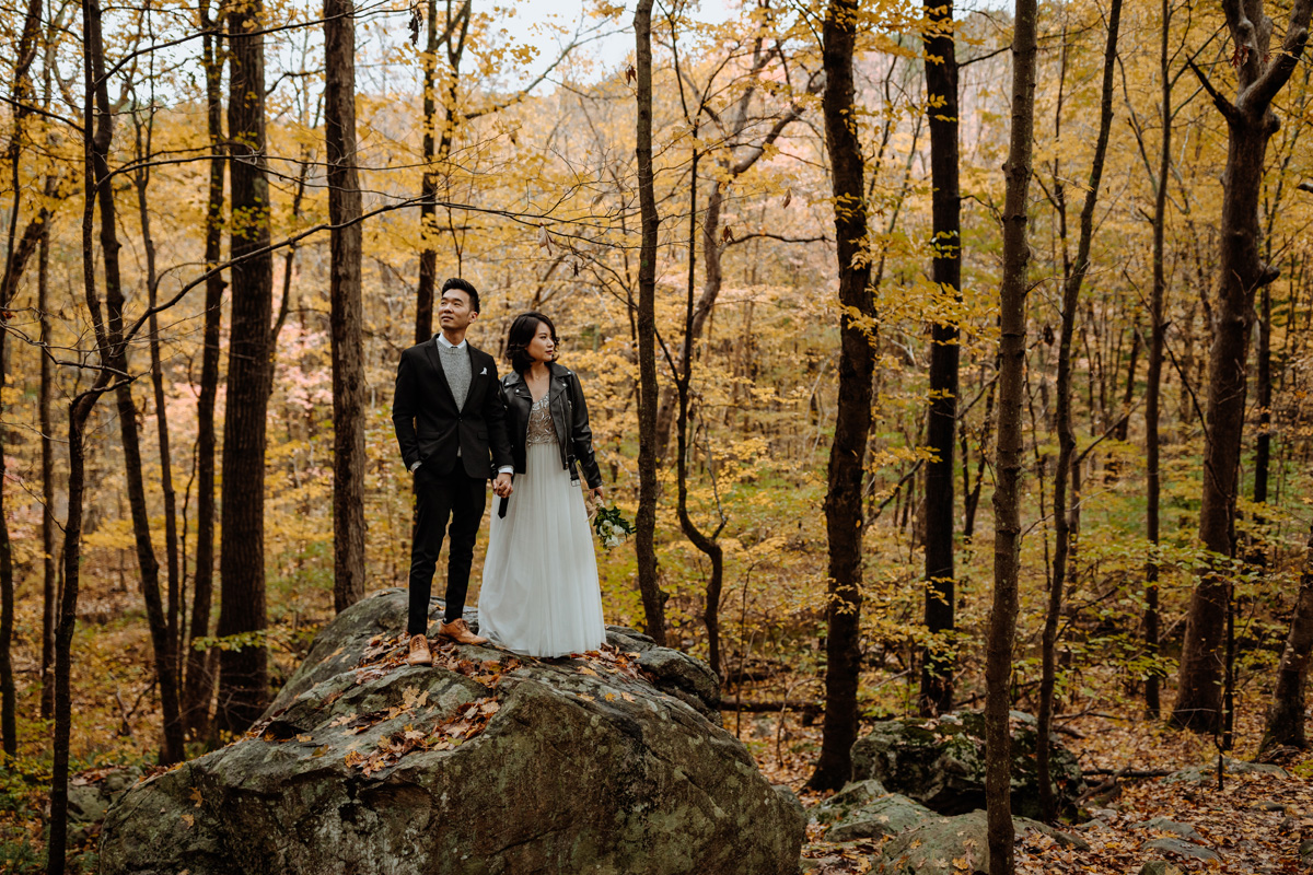 allamuchy-state-park-engagement-photography