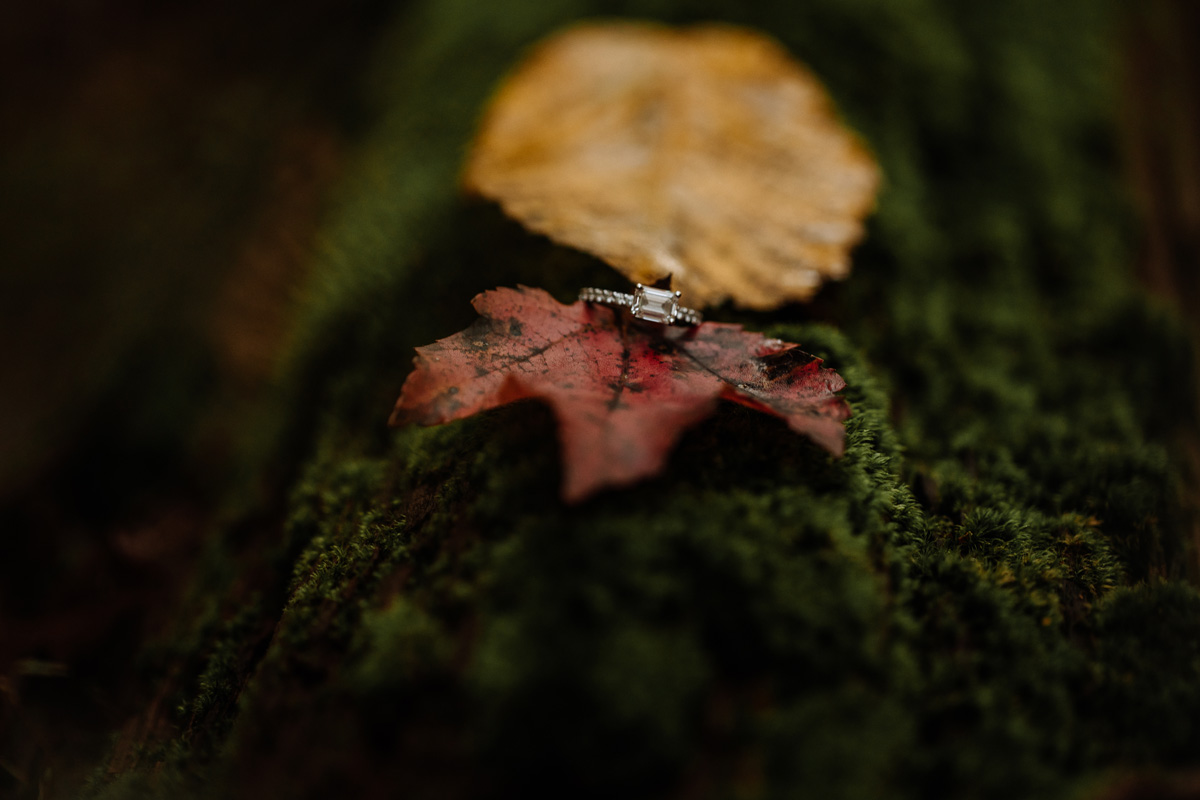 new-jersey-engagement-photography-4