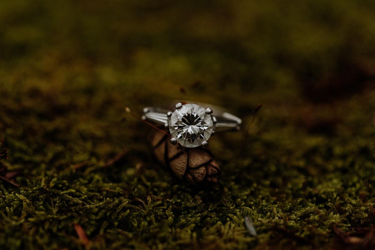 lehigh-valley-engagement-photos-ring-shot