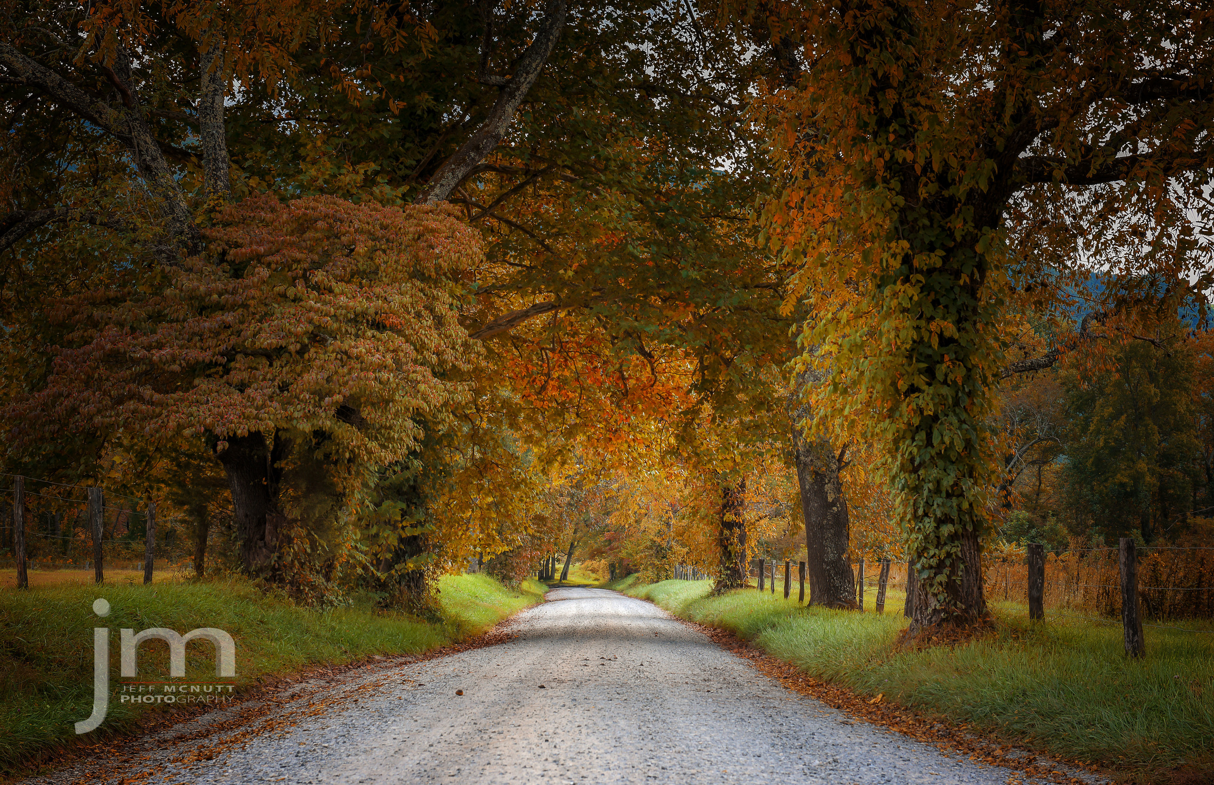 Sparks Lane, Cades Cove, Great Smoky Mountains National Park