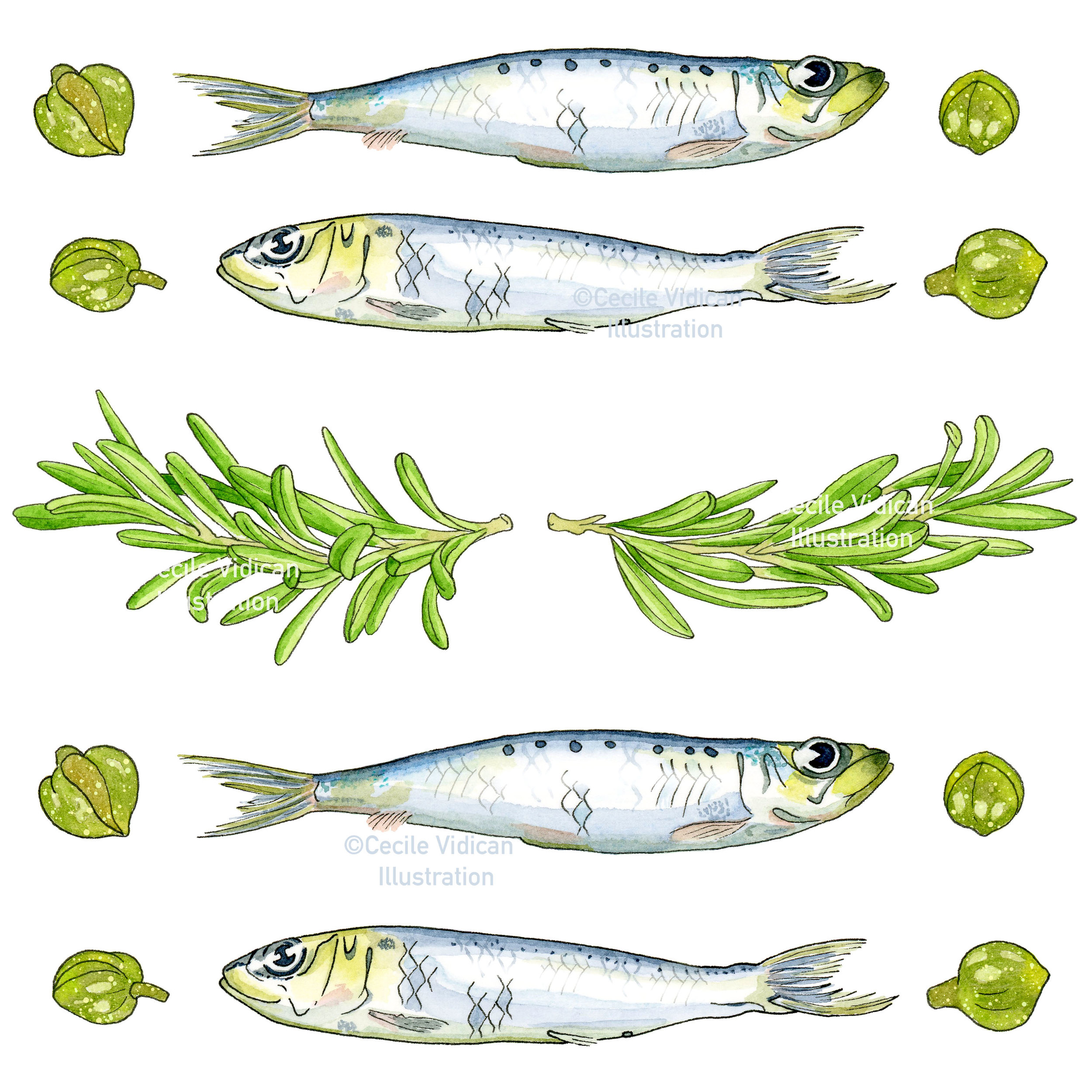 Sardines and Capers