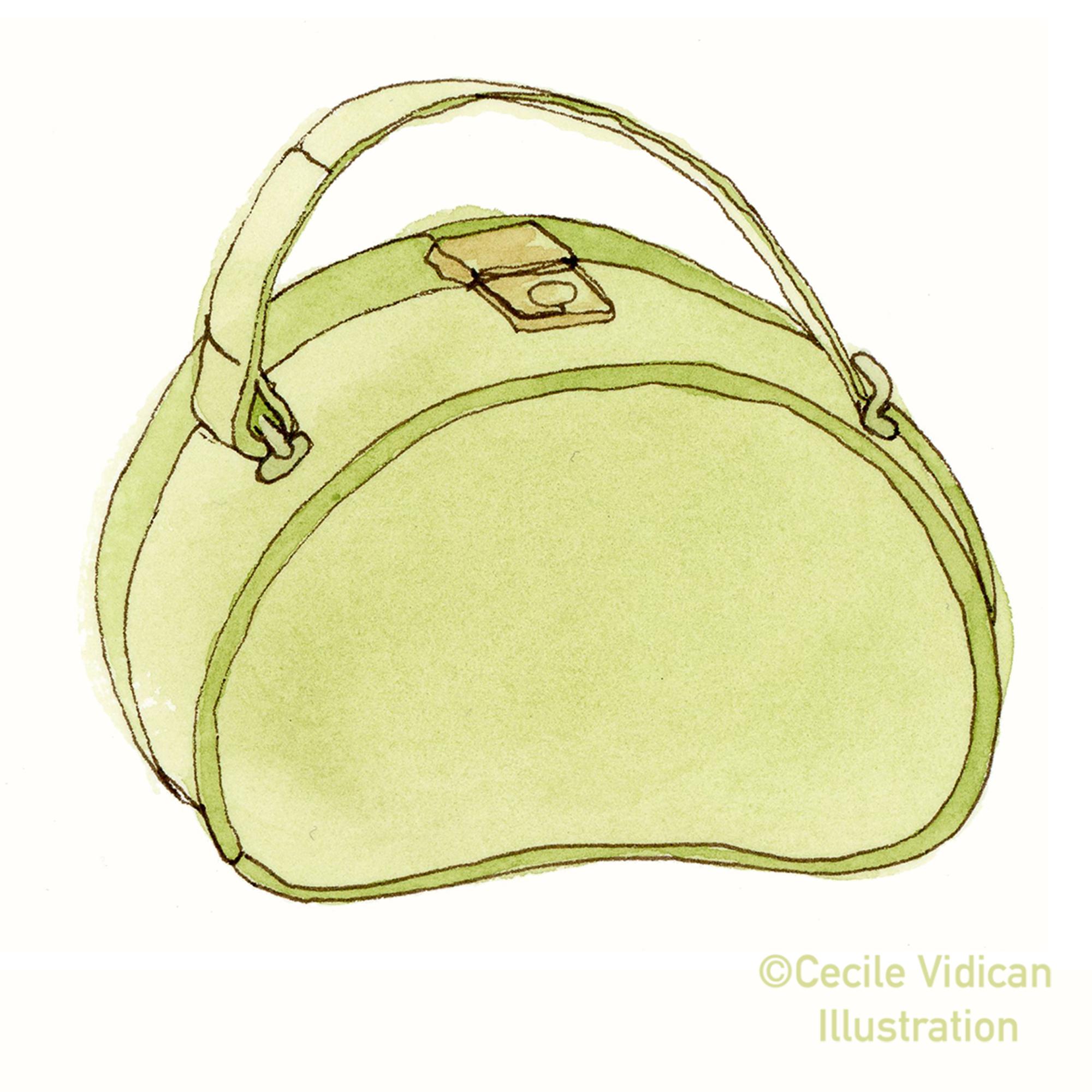 Green Vanity Bag