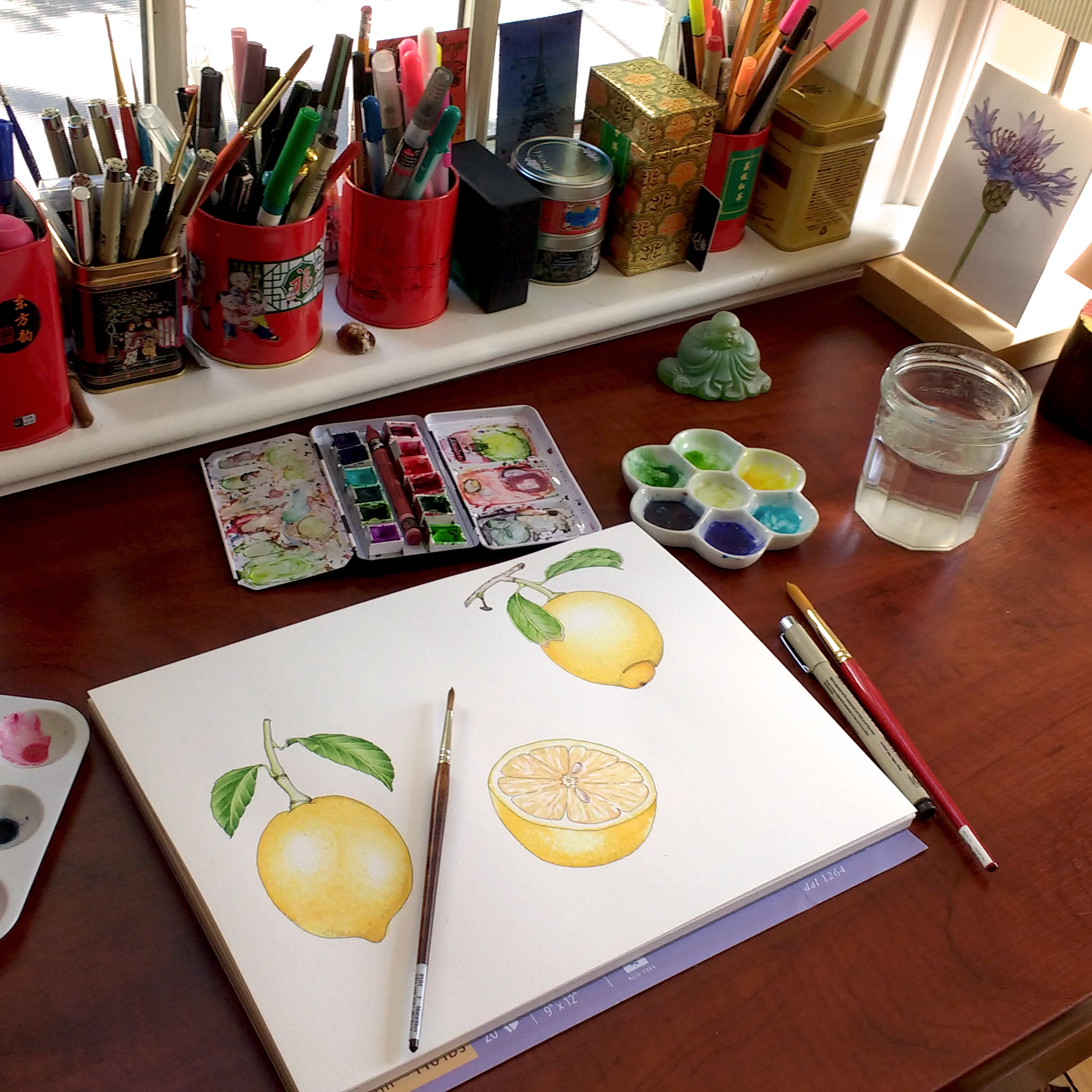 Finished lemon illustrations