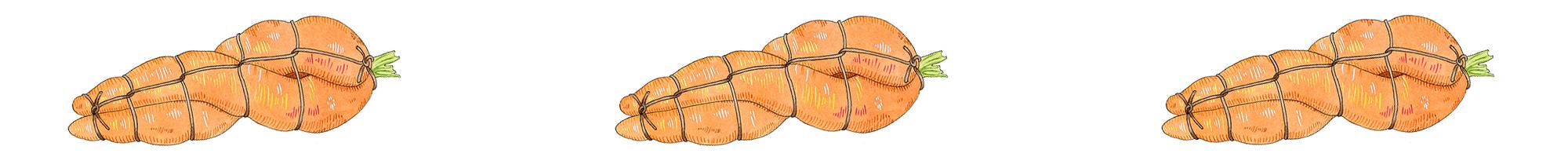 Carrot-Banner.jpg
