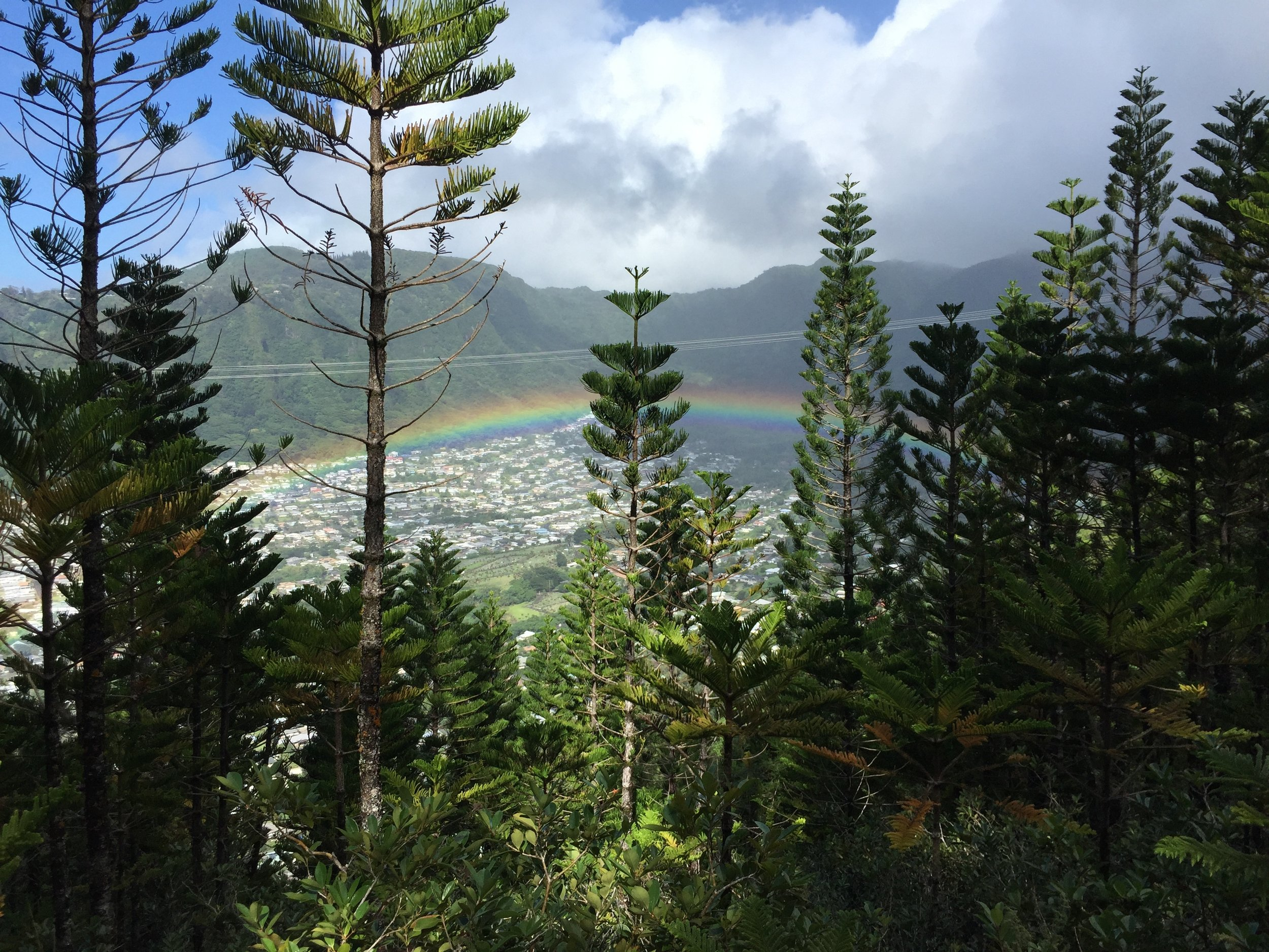 Our lunch view at Wa'ahila Ridge State Recreational Area