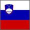 Slovene flag (square).jpg