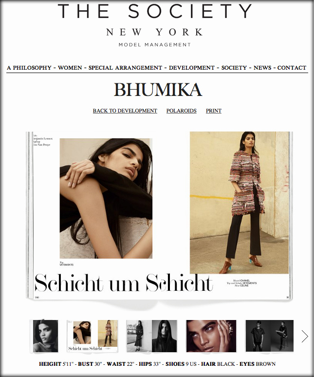 Screen shot from Bhumika's portfolio on The Society Management online |  The Society Management