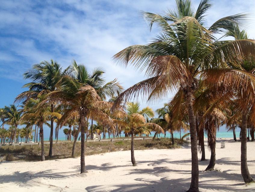 Virginia Key Beach | Photo courtesy ofNatalia Zurowski