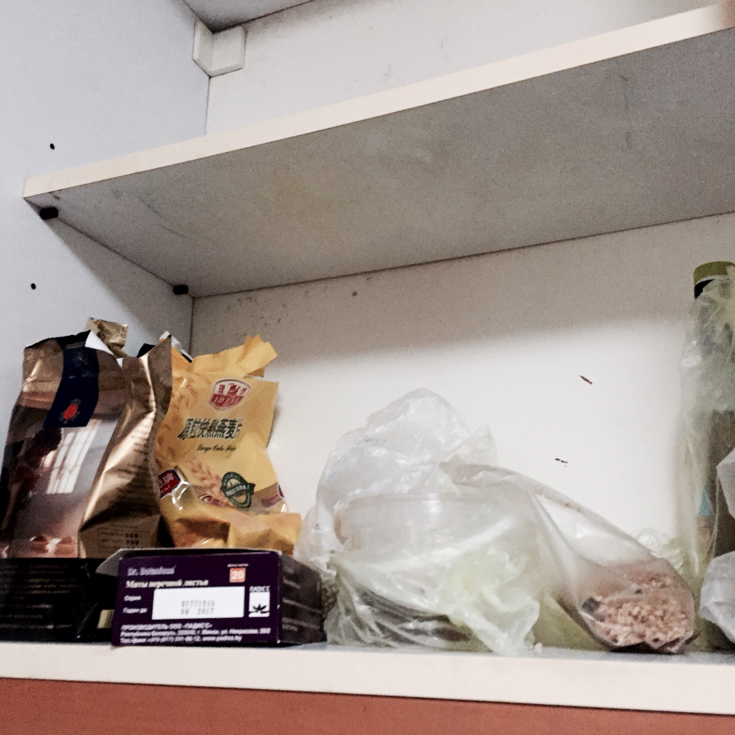 It's nice moving in to a new apartment with food (grechka) already overflowing out of your cupboard that belonged to a model who was there one year ago
