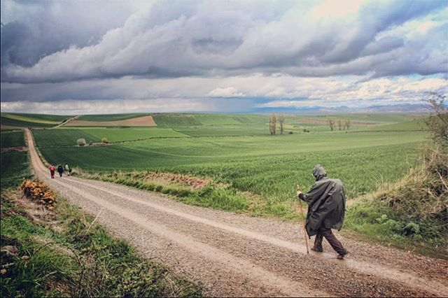 Hundreds of #pilgrims follow the #caminodesantiago in search of meaning and personal truth. In 2014, one carried a cello and explored his relationship with music by performing the works of #johannsebastianbach Premiering @viffest October 2nd #strangersontheearth with #cellist Dane Johansen and #director Tristan Cook #documentary #film #thisisapath