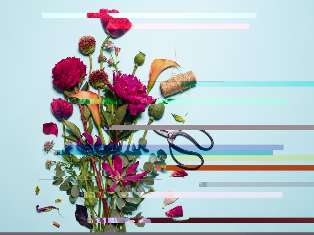 20170605 Flowers-100877 v2.jpg