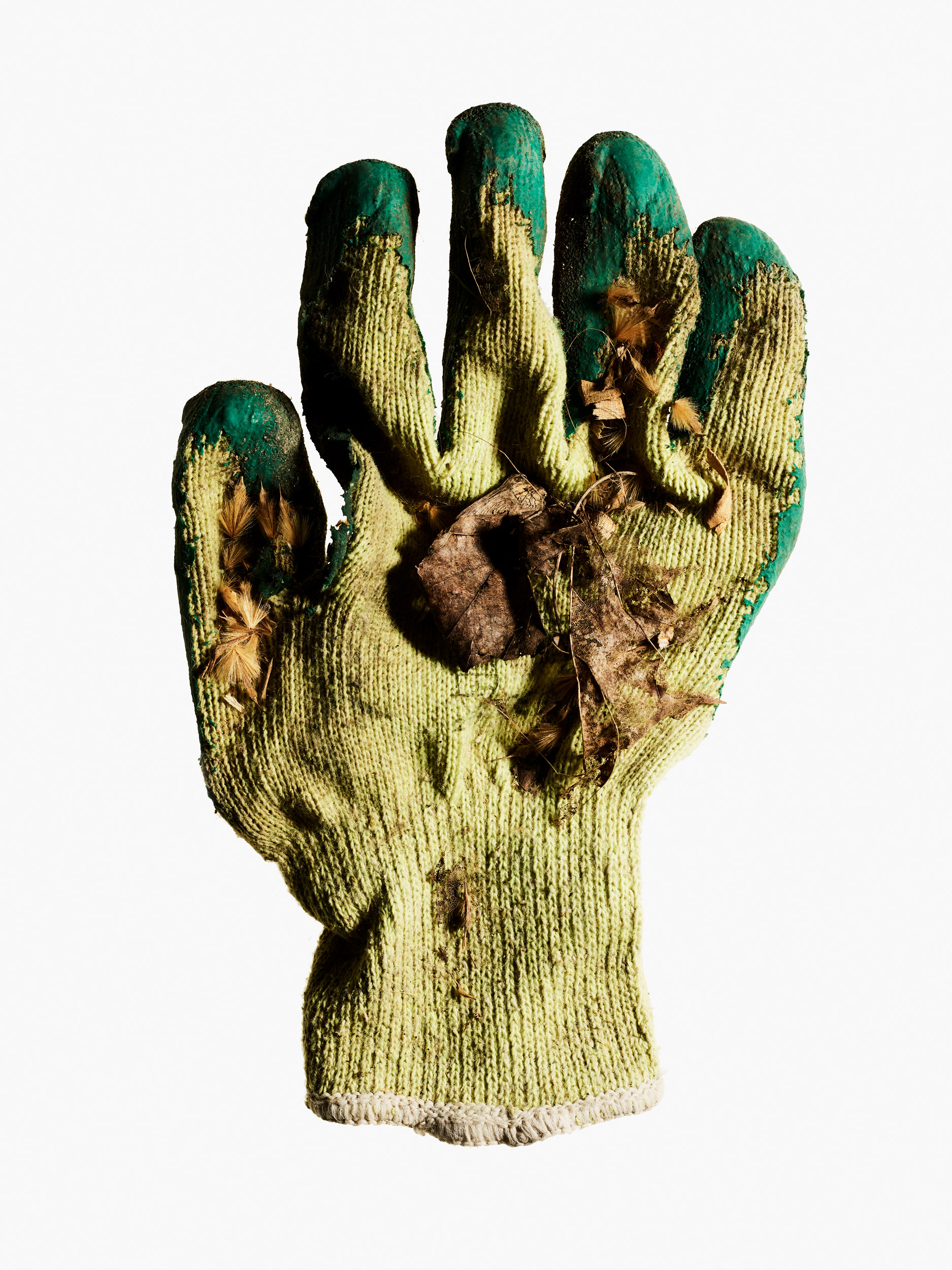 20190321 Gloves-2805.jpg