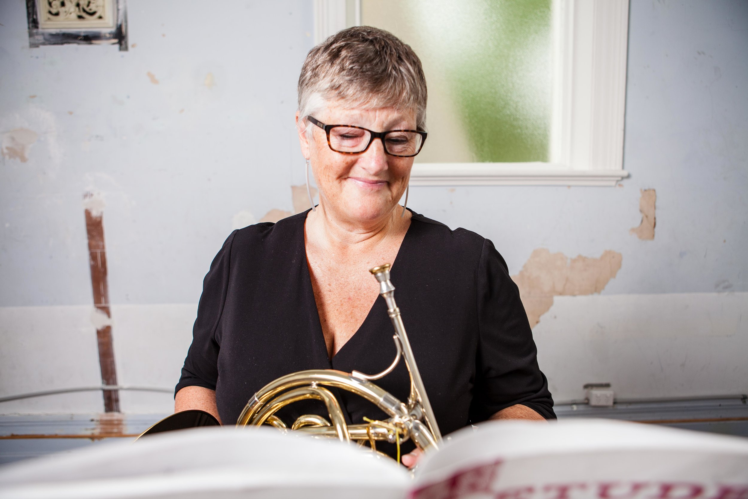 Professional Musician - I am a professional orchestral horn playing working in most Australian Orchestras. I was a principal horn in Orchestra Victoria for almost 20 years and now I am a freelancer.
