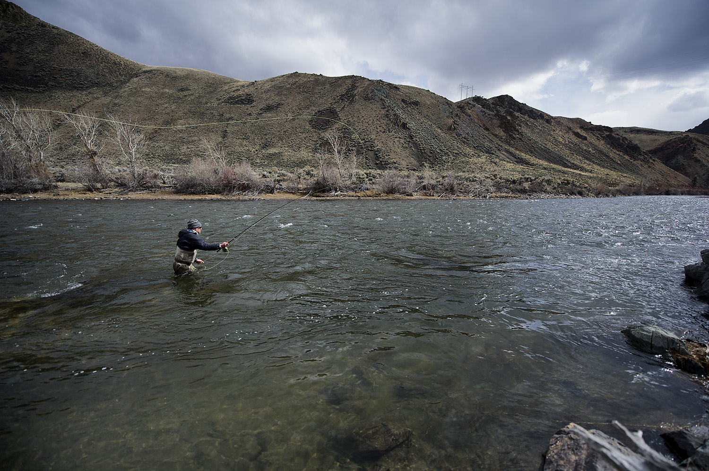 Spring. Salmon River, Idaho