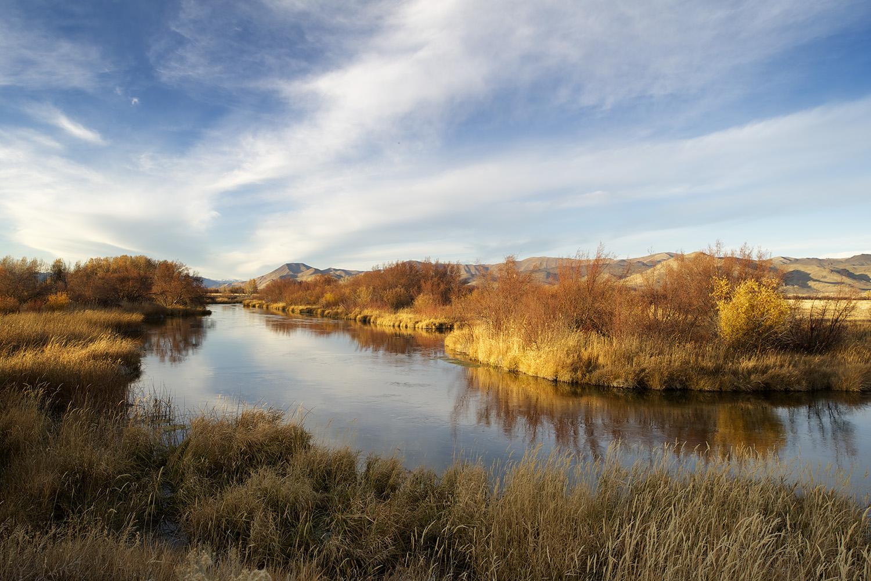 Late Fall. Silver Creek Preserve.