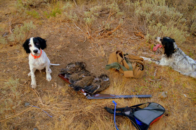 Boone and Winston with an opening day limit of Forest Grouse.