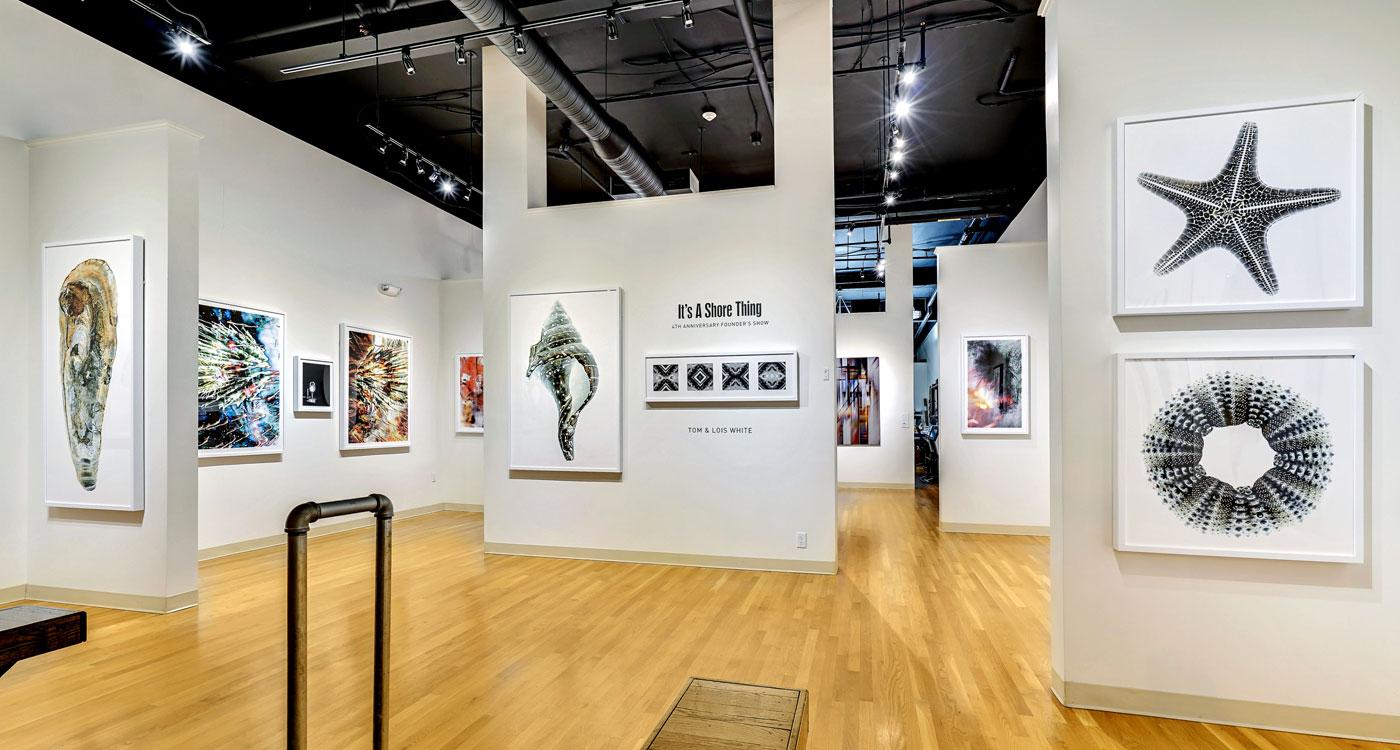 Gallery-front.jpg