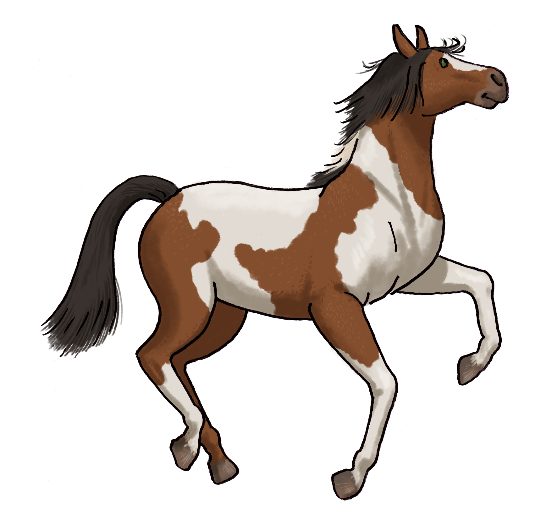 National Show Horse small.jpg