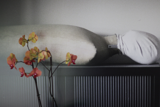 Megatavlan med vilande döing är ett konstverk signerat min sambo. Storfotot upptar en hel vägg här hemma.