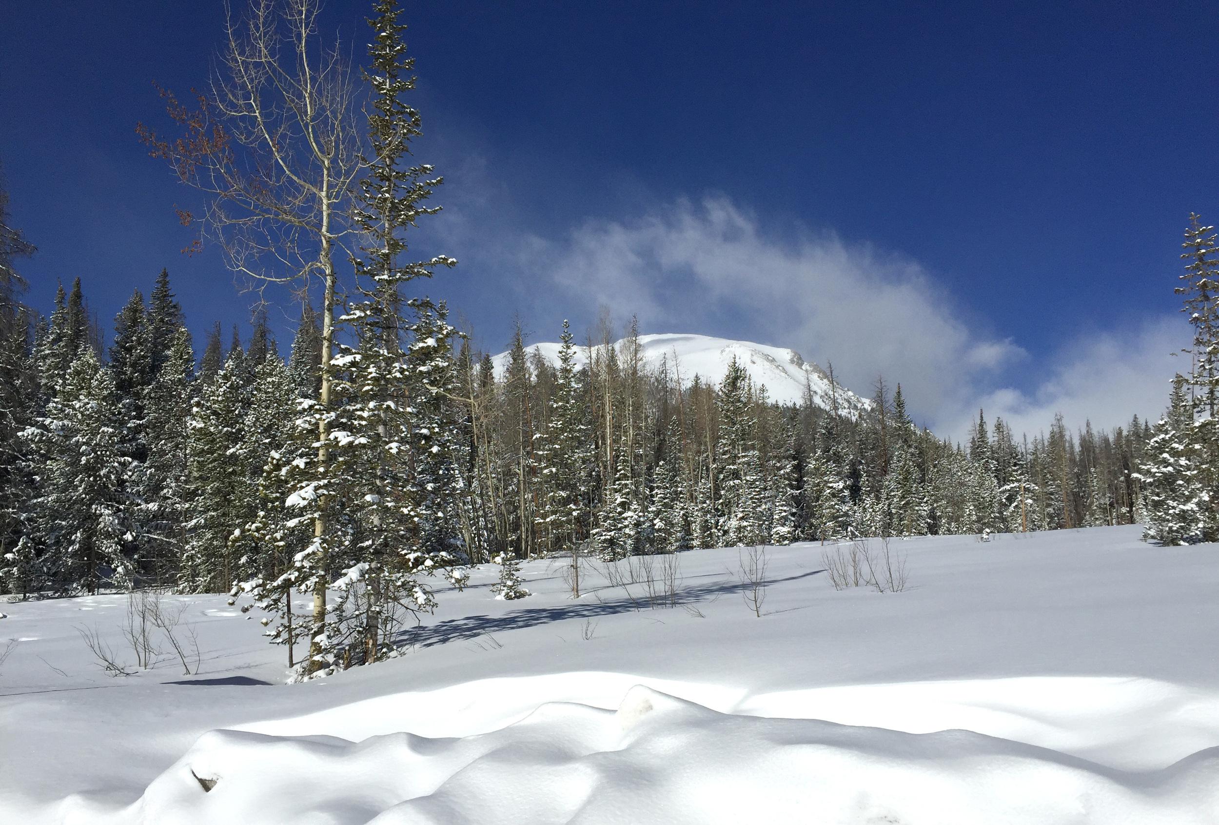 March 24, 2015 Buffalo Mtn. Silverthorne, Colorado