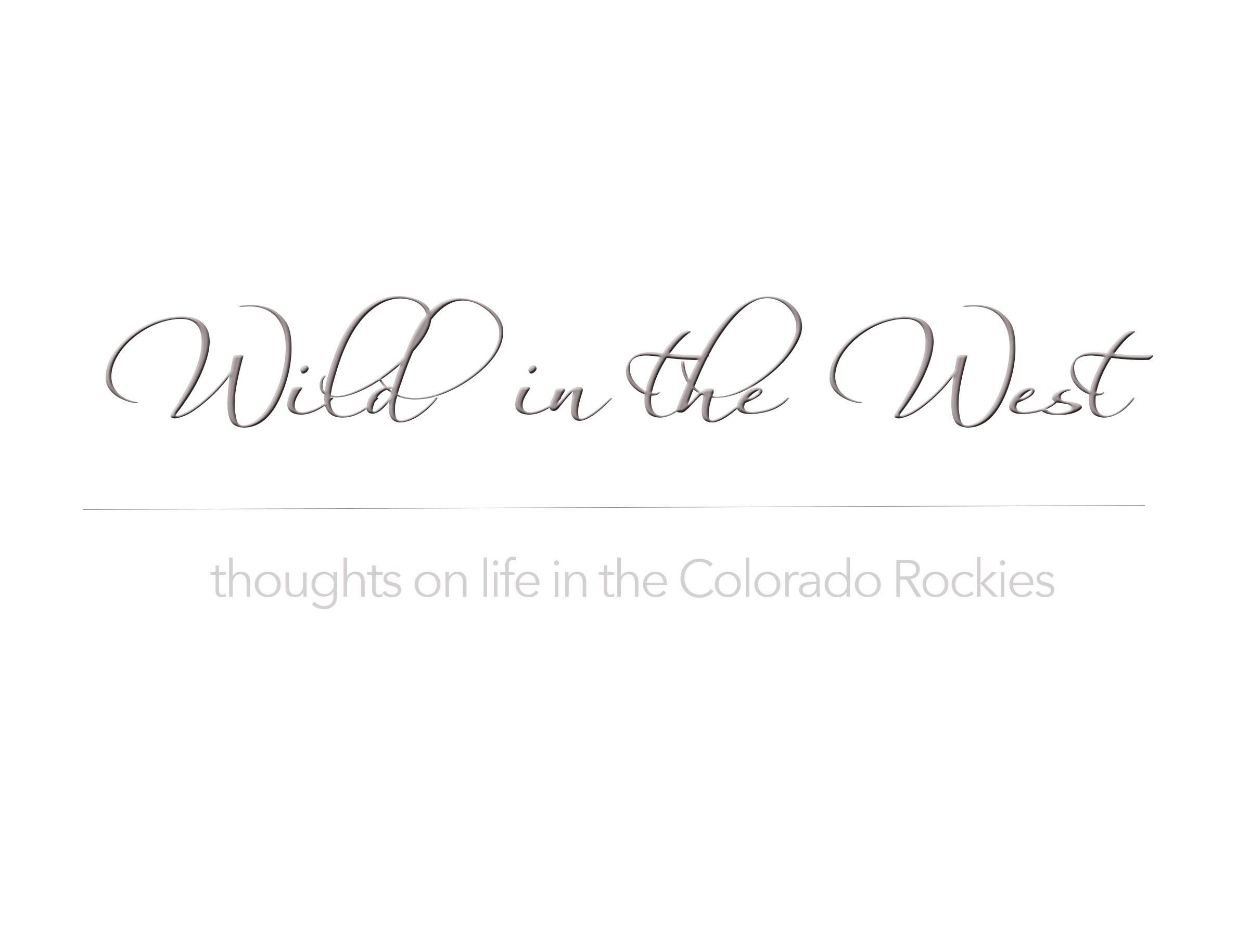 Wild In The West-title.jpg