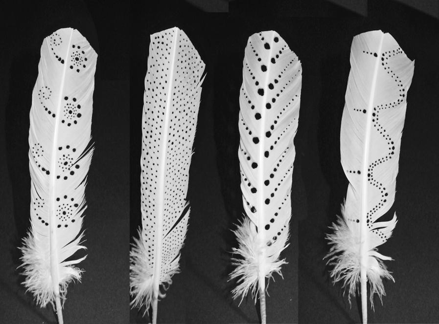 Burnt feathers 2.jpg