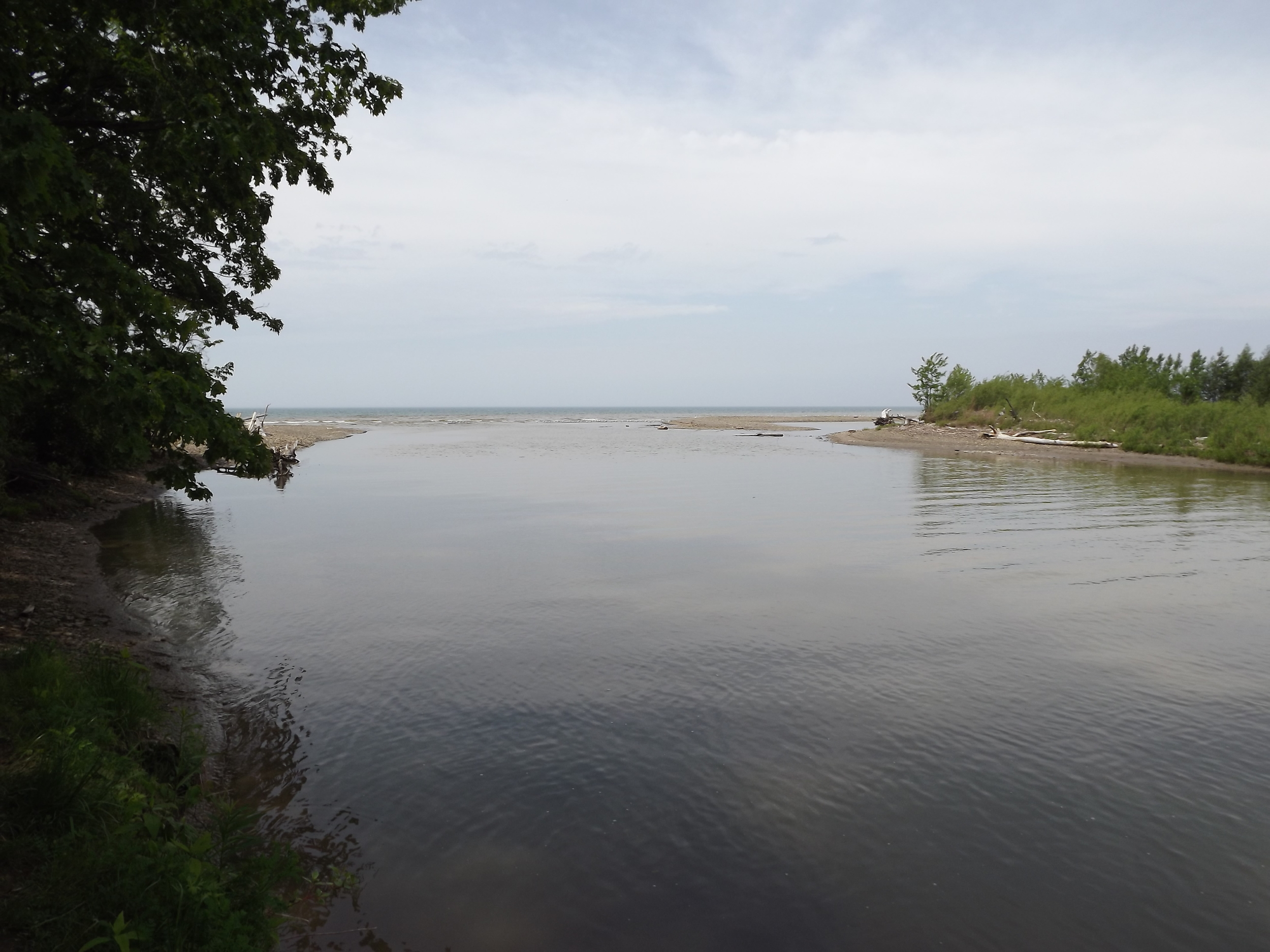 The mouth of Canadaway Creek, near Dunkirk, NY.  5.27.13