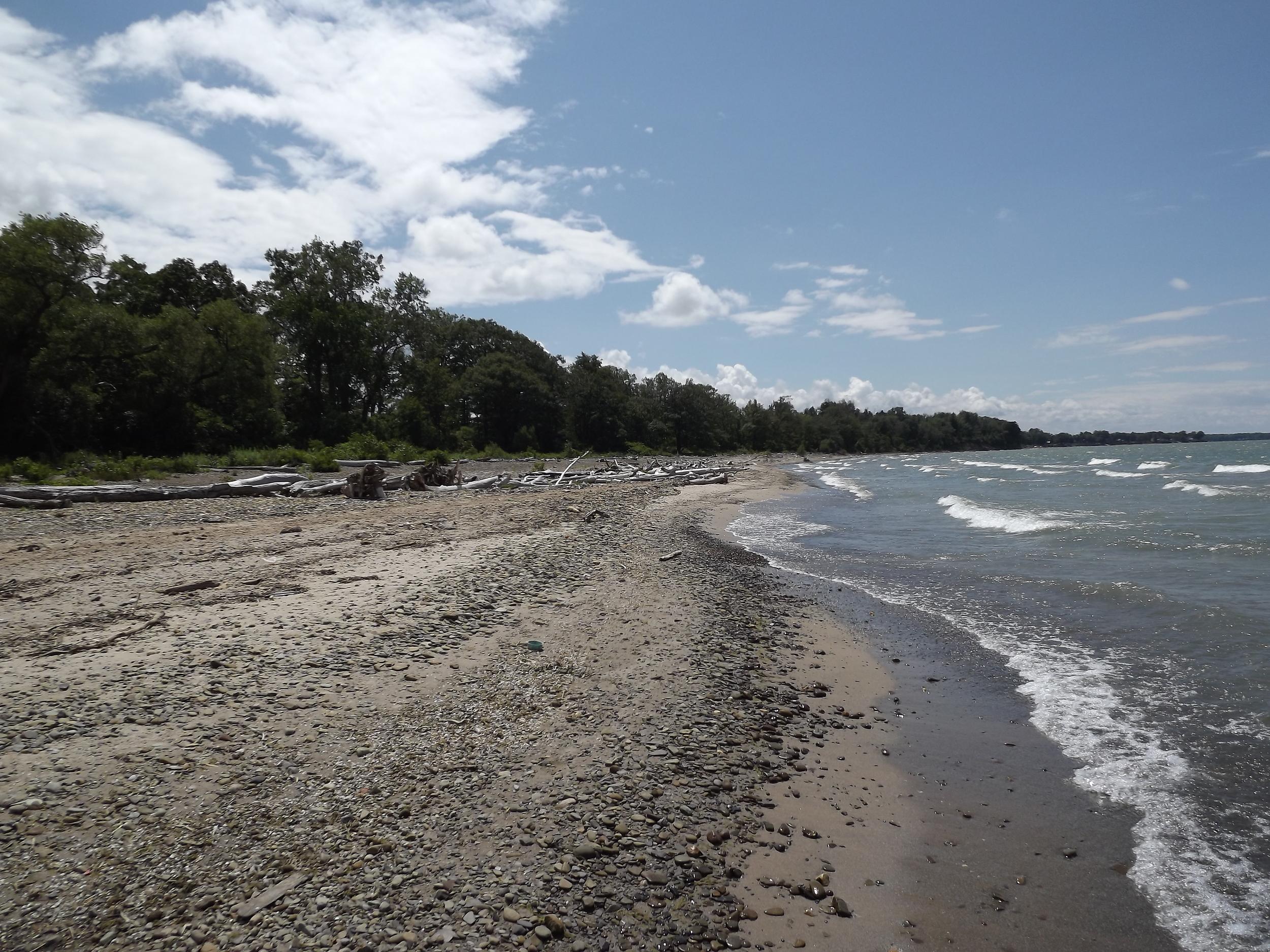 Beach near Canadaway Creek