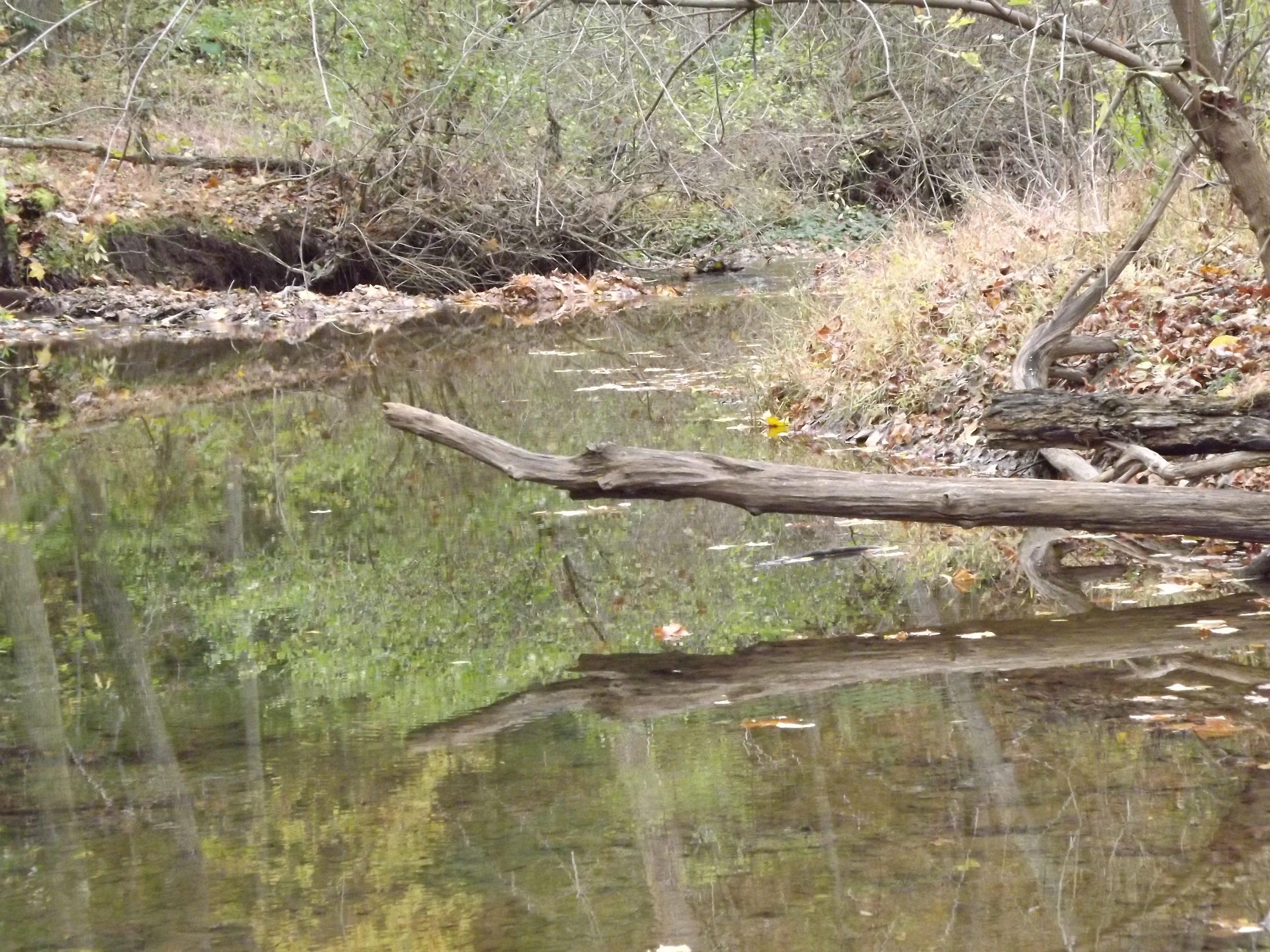 Little Sewickley Creek