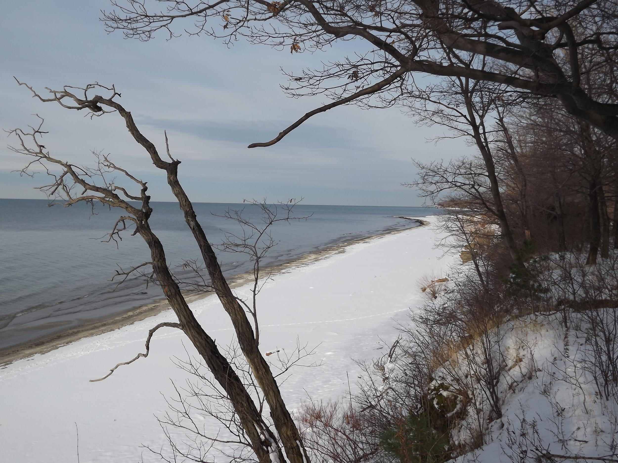Bluff overlooking Beach