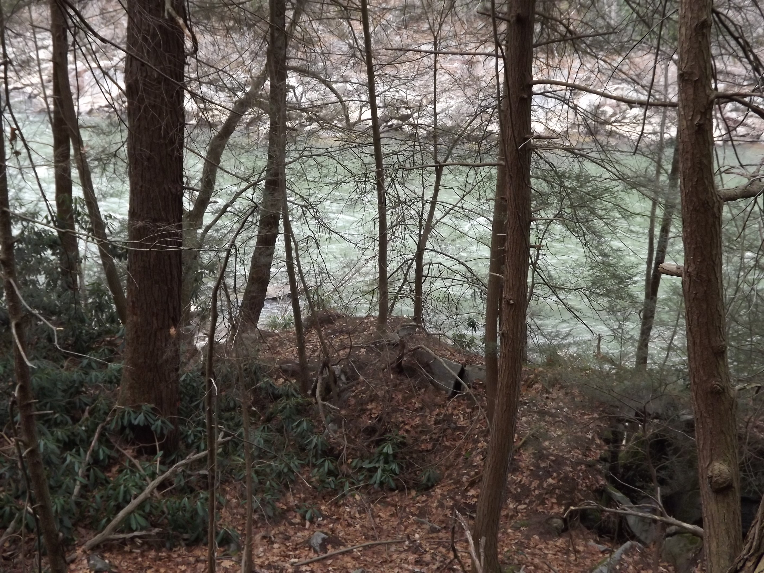 I was hoping the Ferncliff trail would head back down to the river's edge, but after leaving the main falls, it stayed on top of the cliffs for the rest of the way. At one point, the river was visible through the trees and rhododendron thickets so I snapped a few pics.