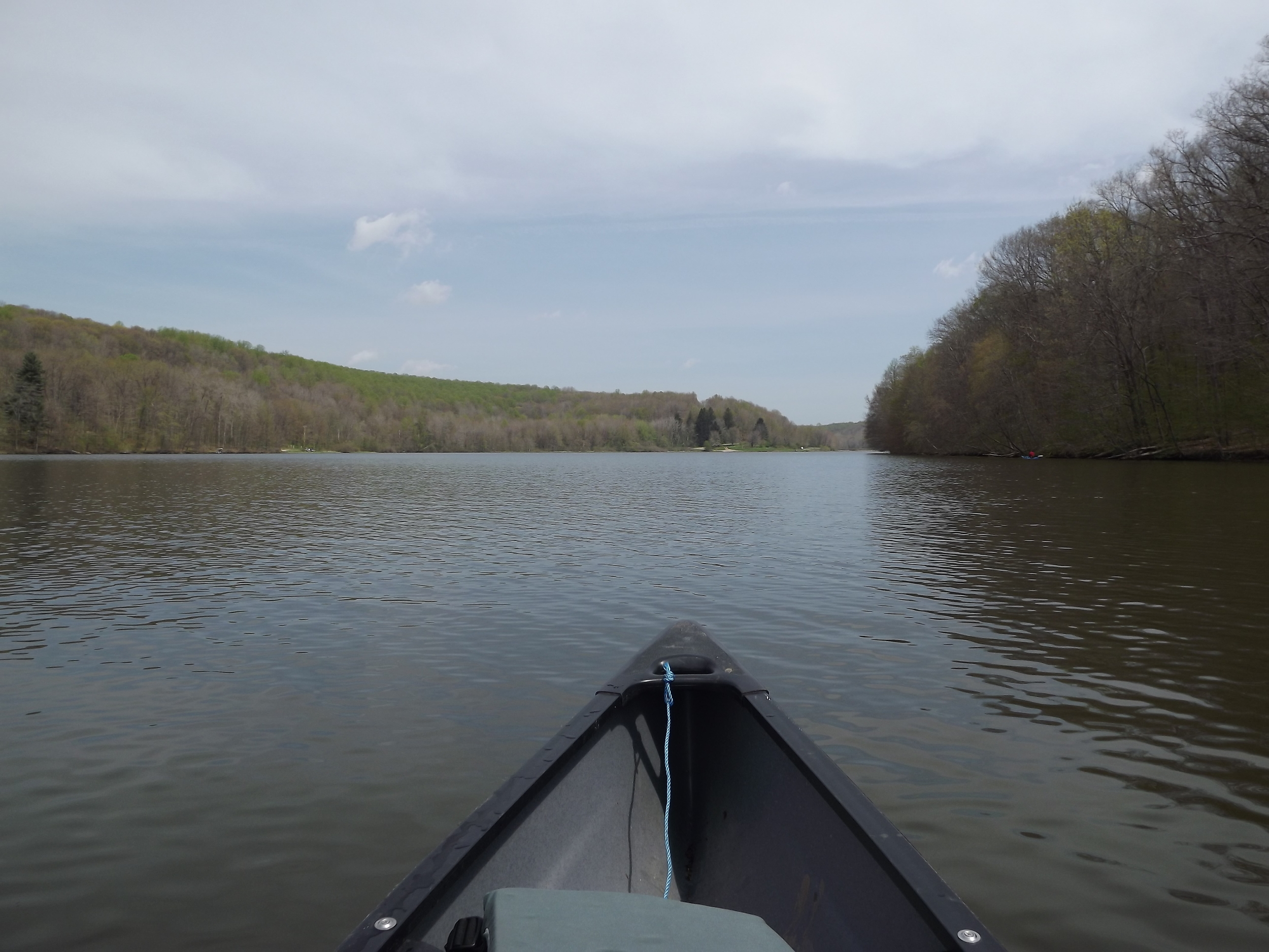 We started our paddle on the lake and headed up to Muddy Creek on the northernmost finger of the eastern end of the lake.  The area along the lake is mostly wooded but is surrounded by rolling hills dotted with farms adding a very rural feel to the area.