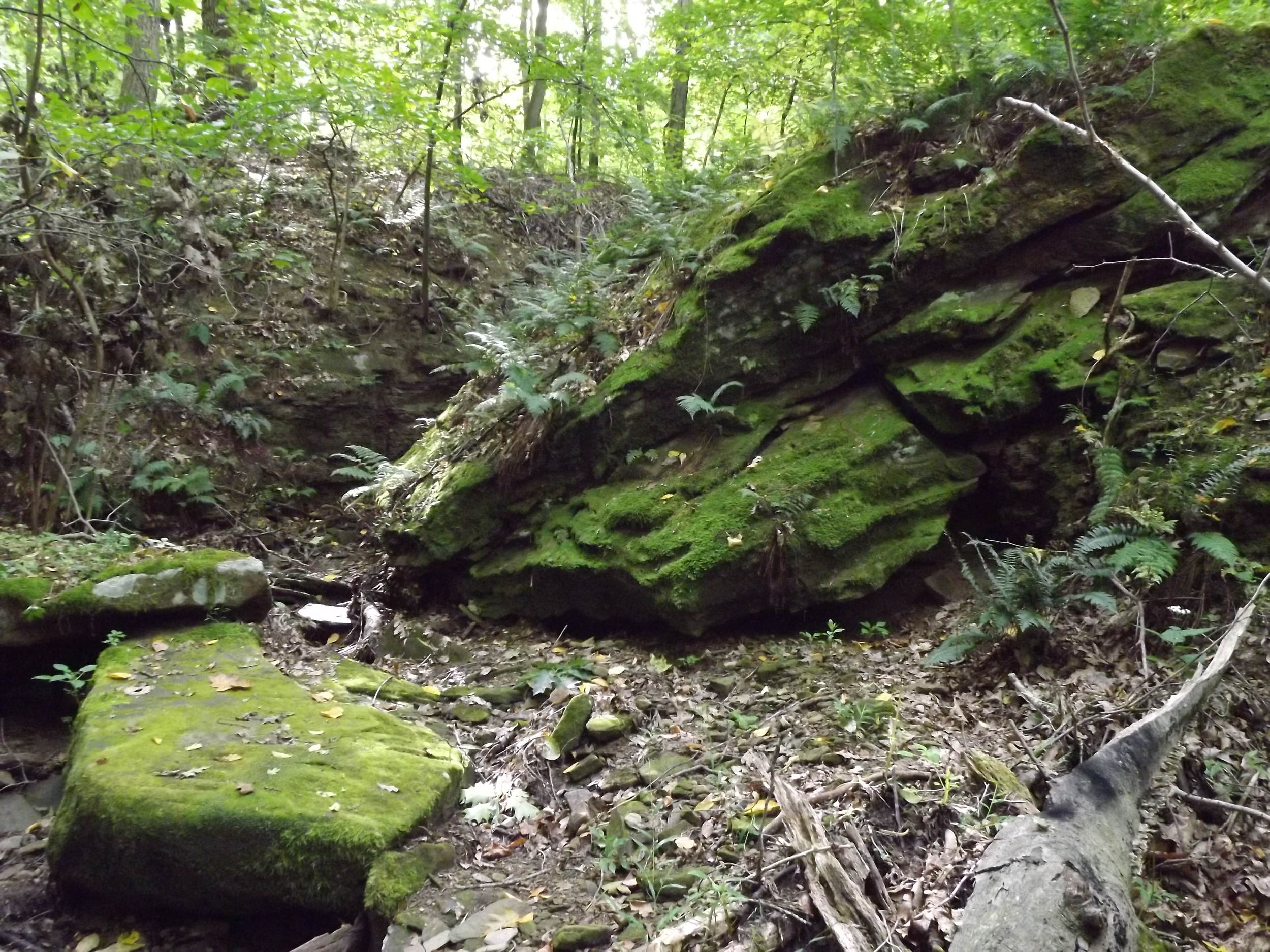 Big Boulder -  This rather large boulder sits at the junction of two very small tributaries of Little Sewickley Creek.  Both tributaries are steep and narrow with a lot of waterfalls and cascades along their lengths, so getting there is not terribly easy, but it's worth it.