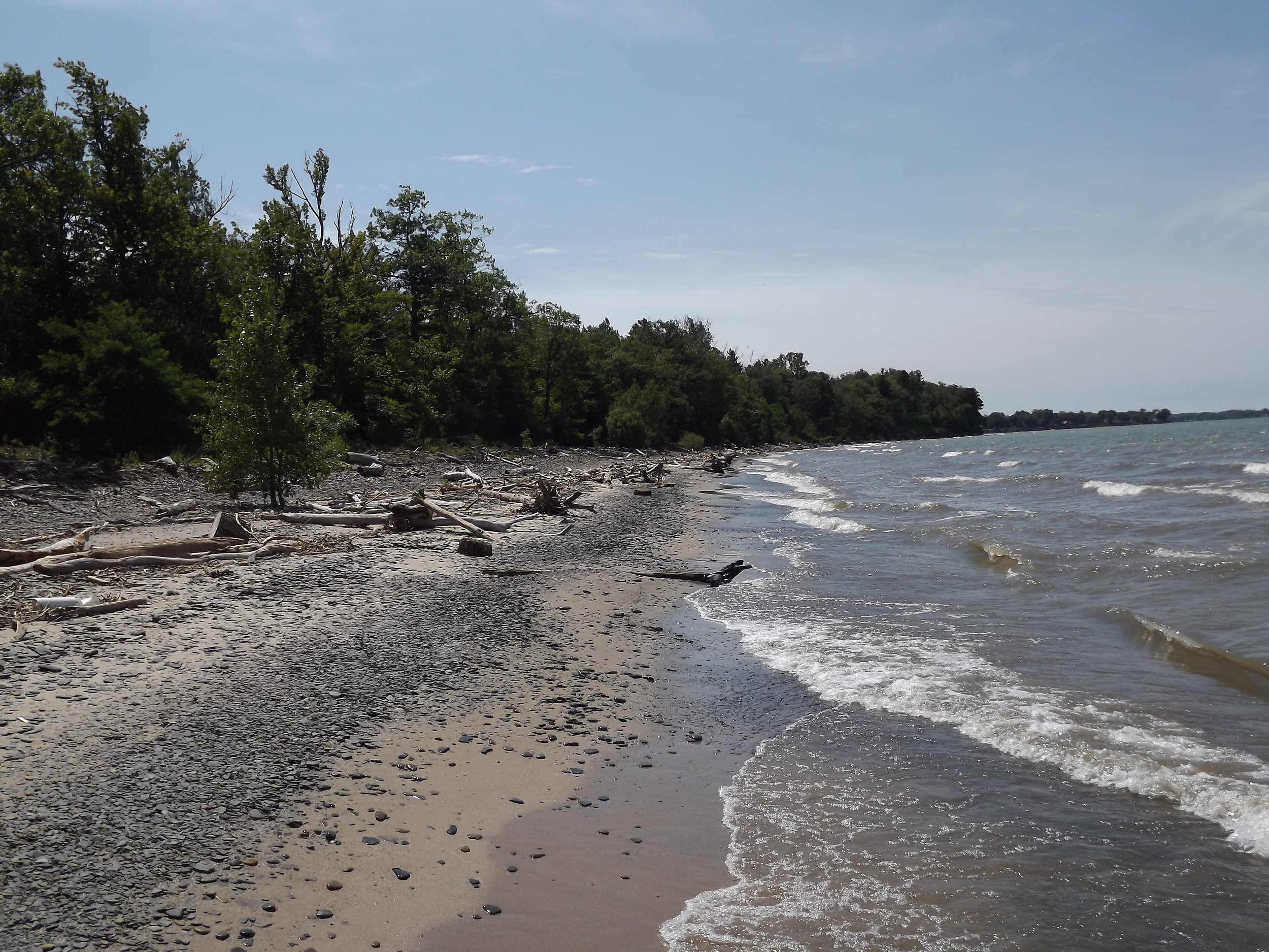 Lake Erie Beach - We had pretty good weather up there for our stay and this particular day was especially sunny. This photo was taken from the mouth of Canadaway Creek and provides a good view of the beach and lake looking to the east.