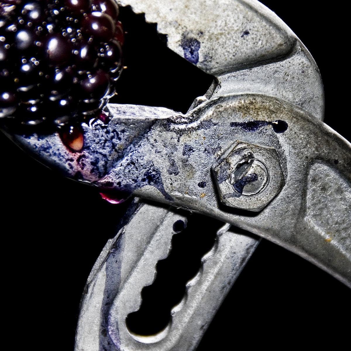 fruit_6.jpg