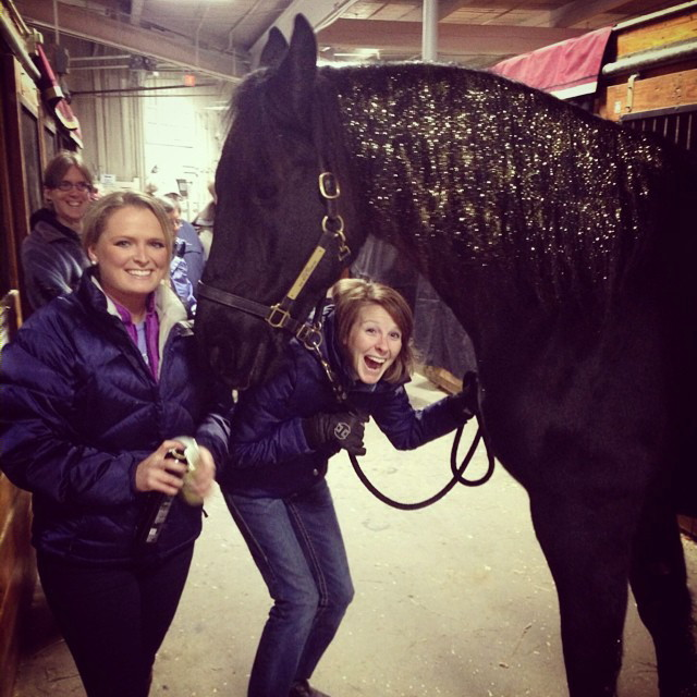 Having way too much fun at the Equine Affaire! Elisha Harvey and Hannah French were my assistants/grooms for the event and they made a great glitter team! Here you can see how much glitter they put in Douwe's mane!