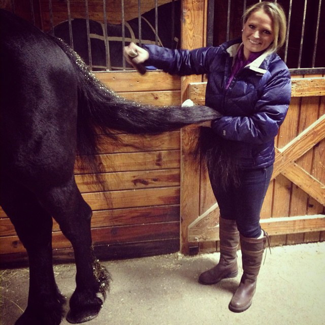 Elisha Harvey is one of Douwe's glitter grooms! Here she is adding more hairspray to his tail to help hold the glitter in....you can also see that she put glitter on his feathers!