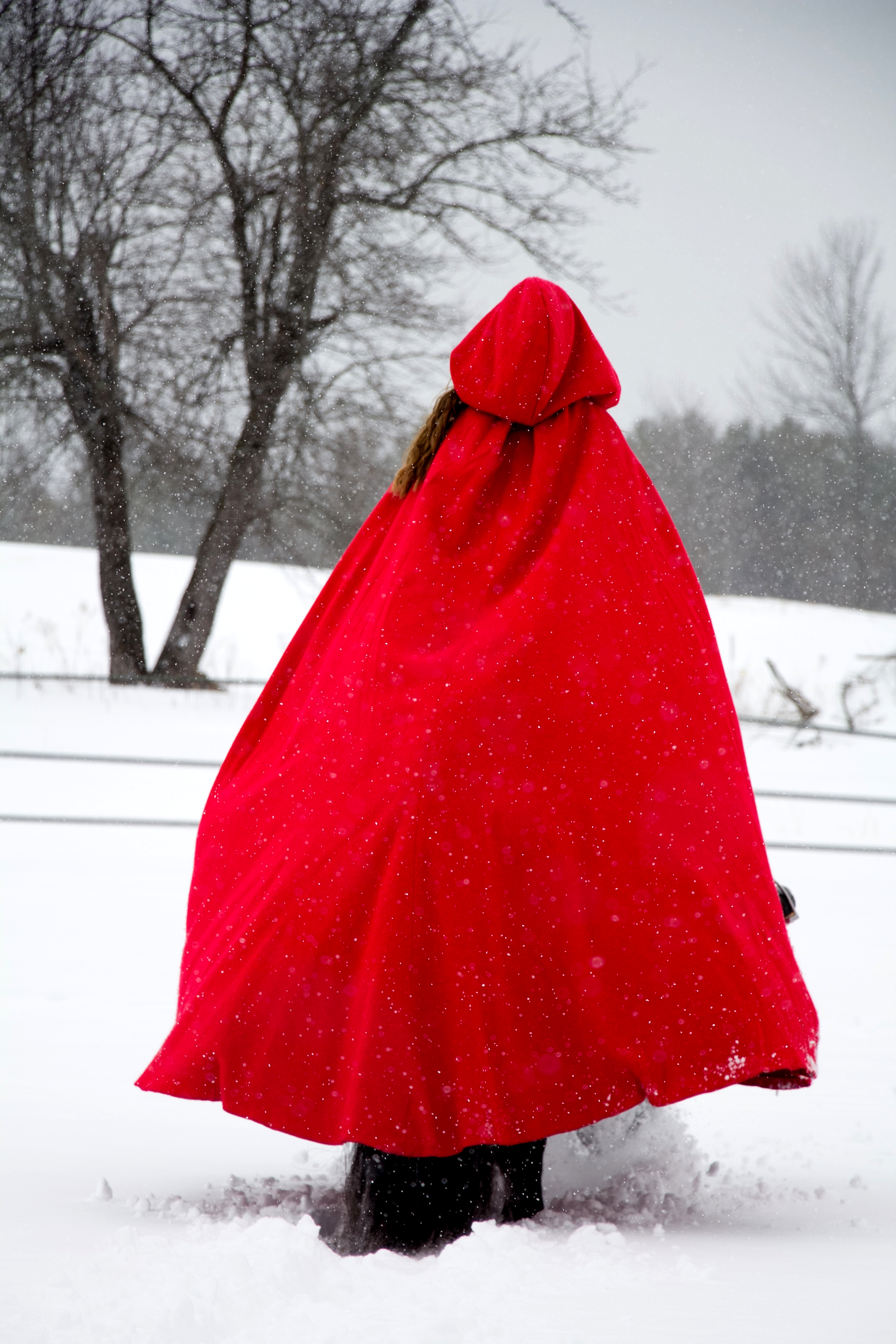 redcapefrombehind.jpg