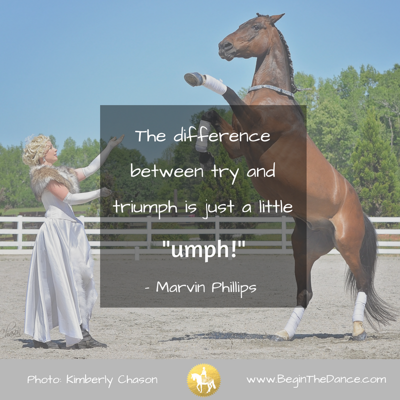 30 Success Quotes for Equestrians - Inspiring Horse Quotes ...