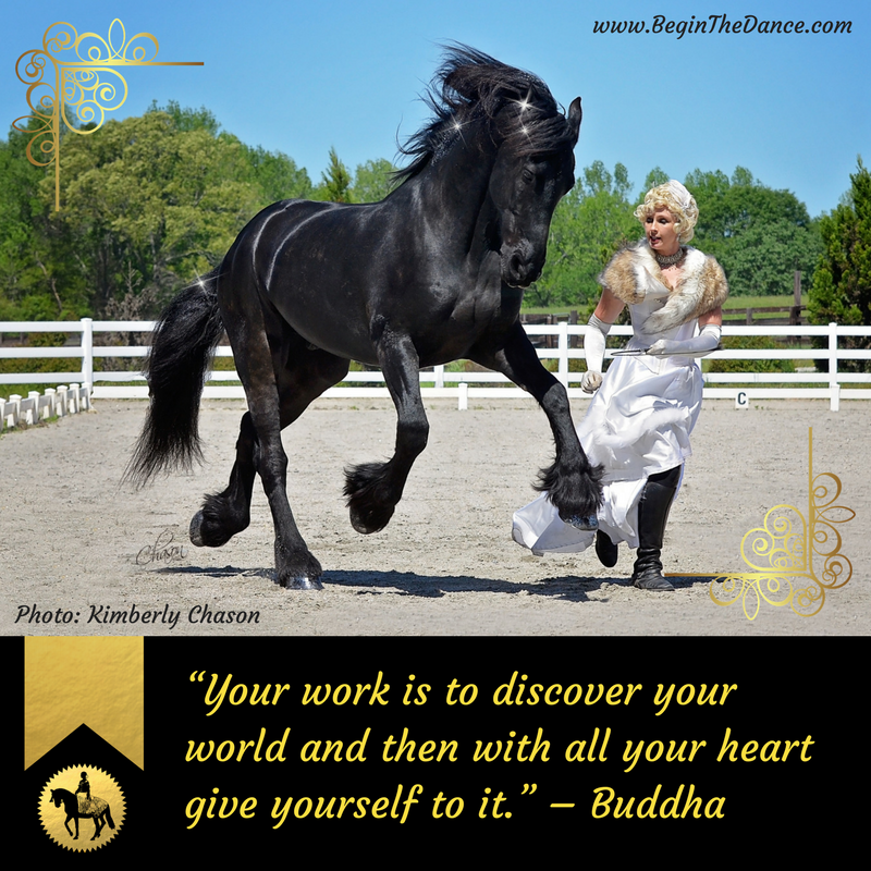 Learn how to incorporate liberty training with your horse.  click here